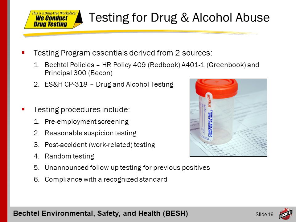 Bechtel Environmental, Safety, and Health (BESH) Slide 19 Testing for Drug & Alcohol Abuse  Testing Program essentials derived from 2 sources: 1.Bech