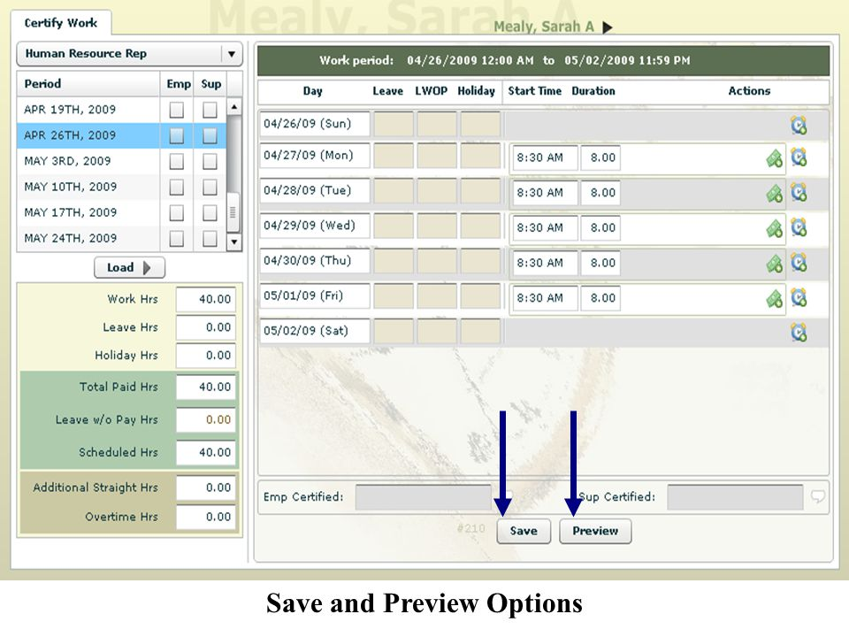 Save and Preview Options