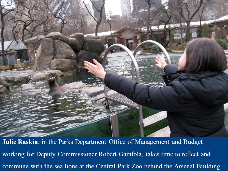 Julie Raskin, in the Parks Department Office of Management and Budget working for Deputy Commissioner Robert Garafola, takes time to reflect and commu