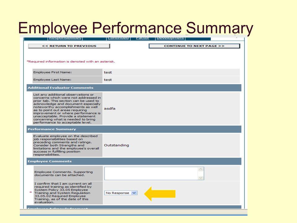 Employee Performance Summary