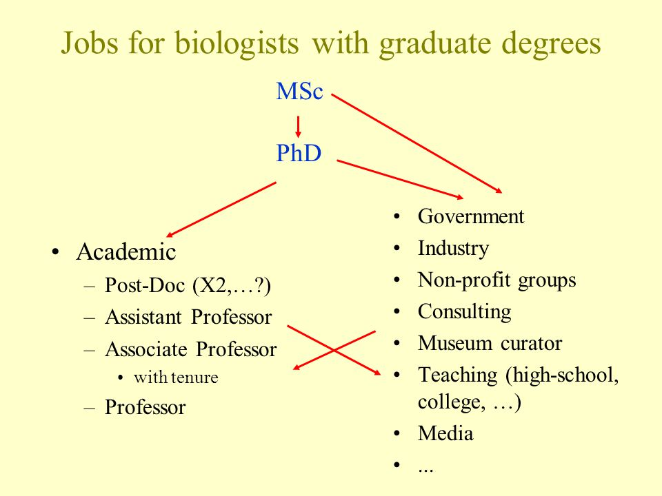 Jobs for biologists with graduate degrees Academic –Post-Doc (X2,… ) –Assistant Professor –Associate Professor with tenure –Professor Government Industry Non-profit groups Consulting Museum curator Teaching (high-school, college, …) Media...