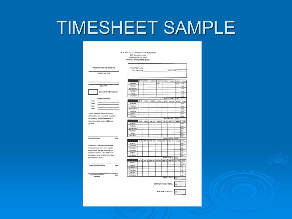 TIMESHEET SAMPLE