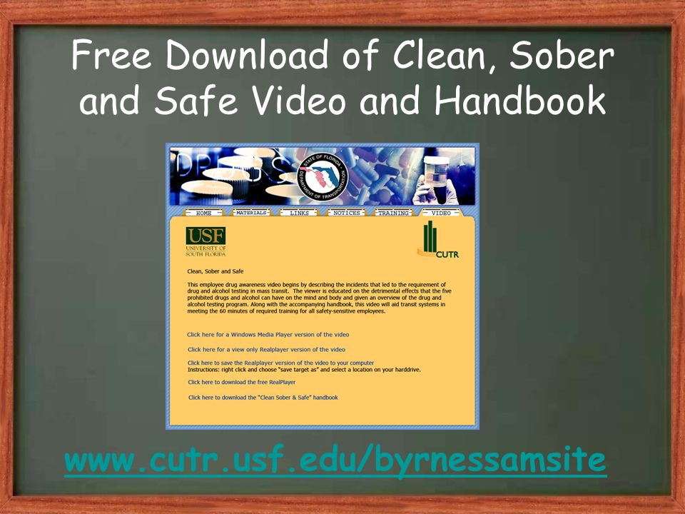 Free Download of Clean, Sober and Safe Video and Handbook www.cutr.usf.edu/byrnessamsite