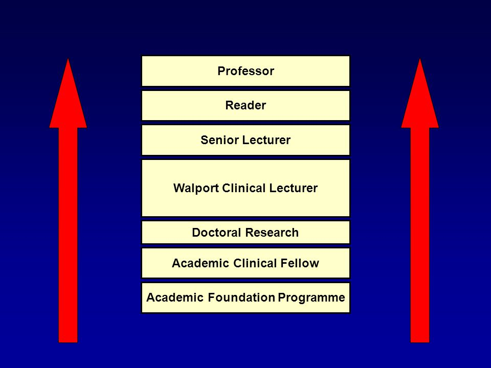 Academic Foundation Programme Academic Clinical Fellow Doctoral Research Walport Clinical Lecturer Senior Lecturer Reader Professor