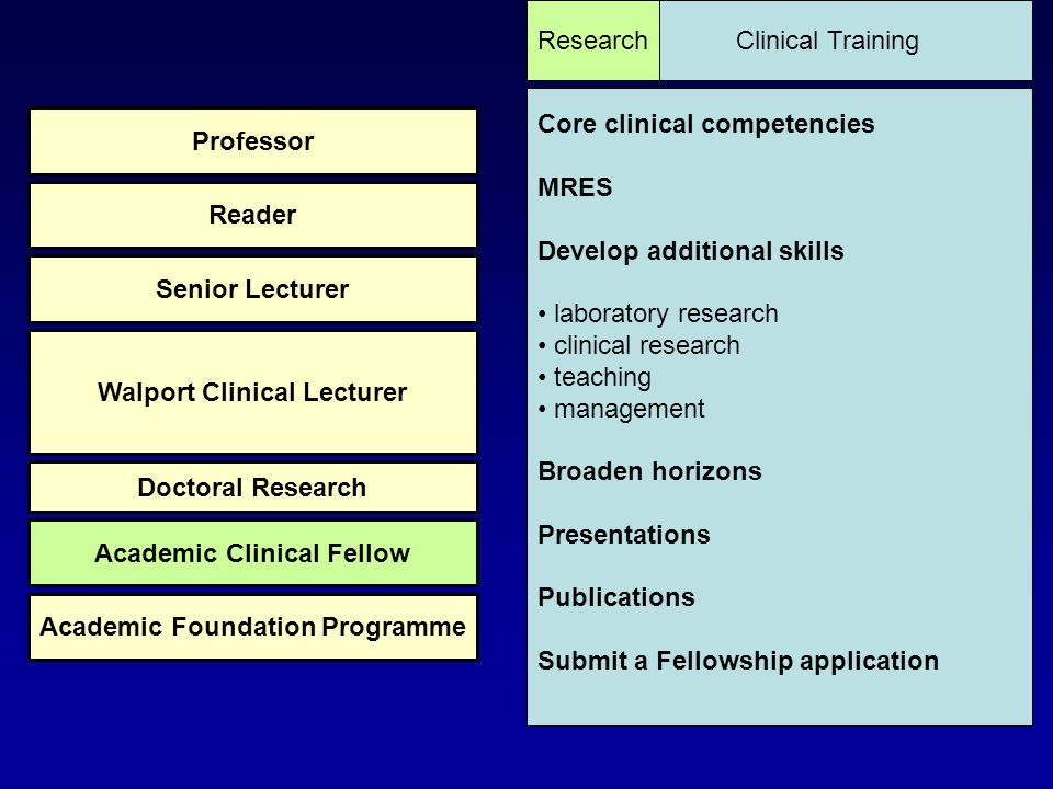 Research Supervisor Clinical Supervisor Academic Supervisor Educational Supervisor Programme Director for Academic Training Director of Clinical Academic Training Programme Director Academic Mentor