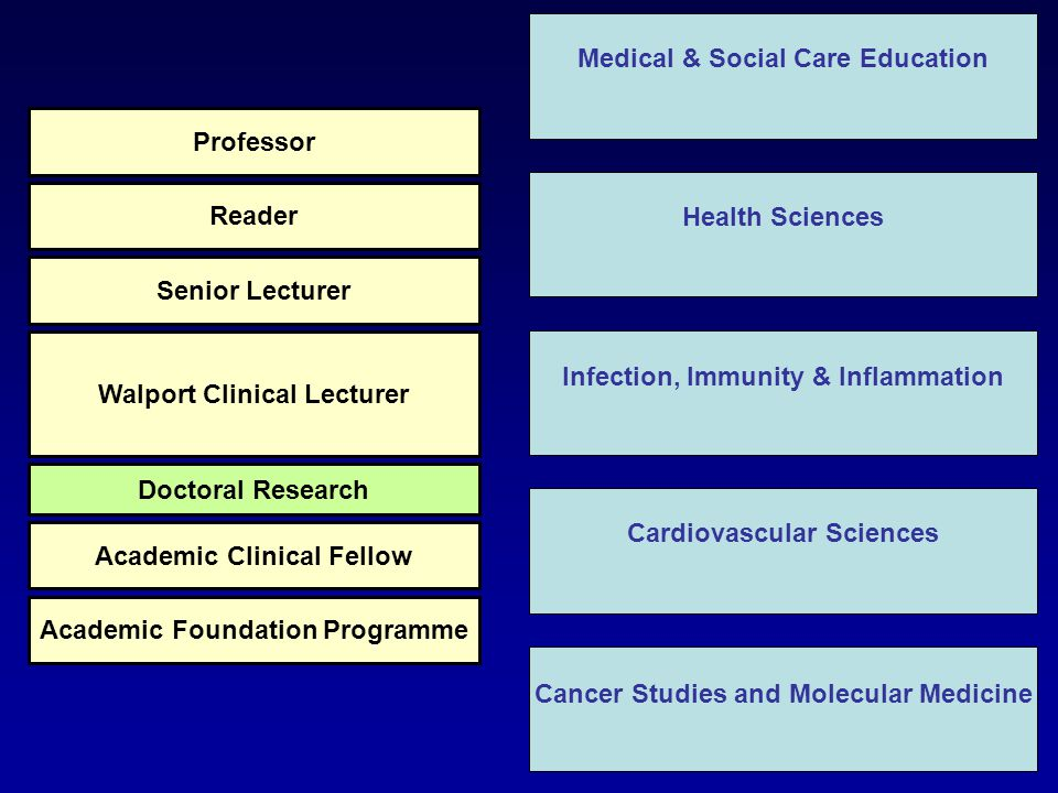 Health Sciences Infection, Immunity & Inflammation Cardiovascular Sciences Cancer Studies and Molecular Medicine Medical & Social Care Education Academic Foundation Programme Academic Clinical Fellow Doctoral Research Walport Clinical Lecturer Senior Lecturer Reader Professor