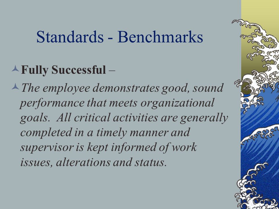 Standards - Benchmarks Fully Successful – The employee demonstrates good, sound performance that meets organizational goals. All critical activities a