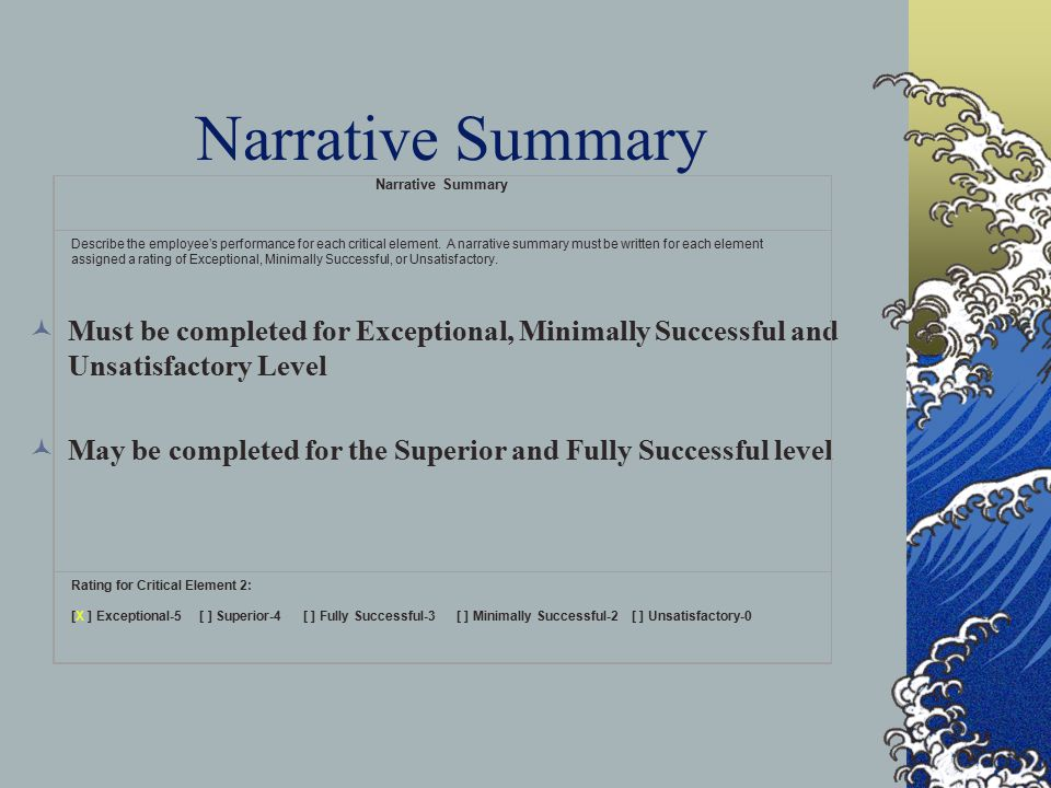 Narrative Summary Must be completed for Exceptional, Minimally Successful and Unsatisfactory Level May be completed for the Superior and Fully Success