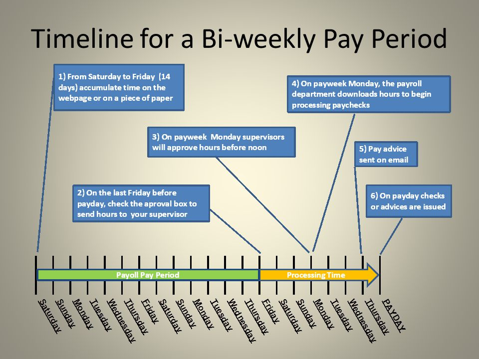 Timeline for a Bi-weekly Pay Period