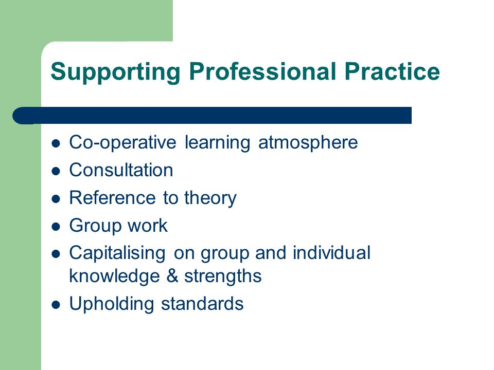 Supporting Professional Practice Co-operative learning atmosphere Consultation Reference to theory Group work Capitalising on group and individual knowledge & strengths Upholding standards