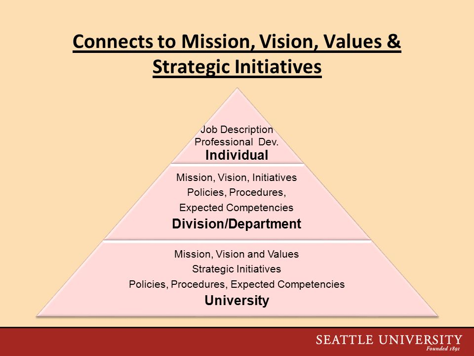 Components of an Effective Performance Management Process  Connects individual performance to SU's Mission, Vision, Values and Strategic Initiatives  Measures and Recognizes Individual Performance and Contributions  Promotes Professional Excellence and Professional Development