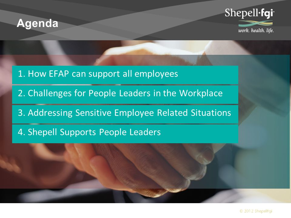 About Shepell Largest EFAP provider covering 10,000 organizations and 8 million employees and their families.