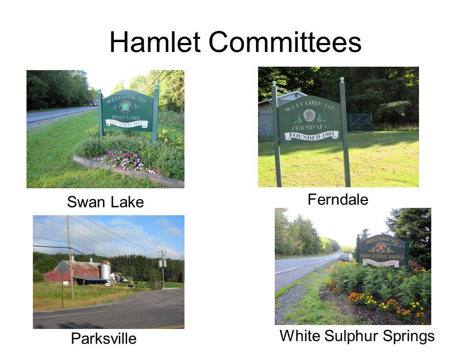 Hamlet Committees Parksville Swan Lake Ferndale White Sulphur Springs