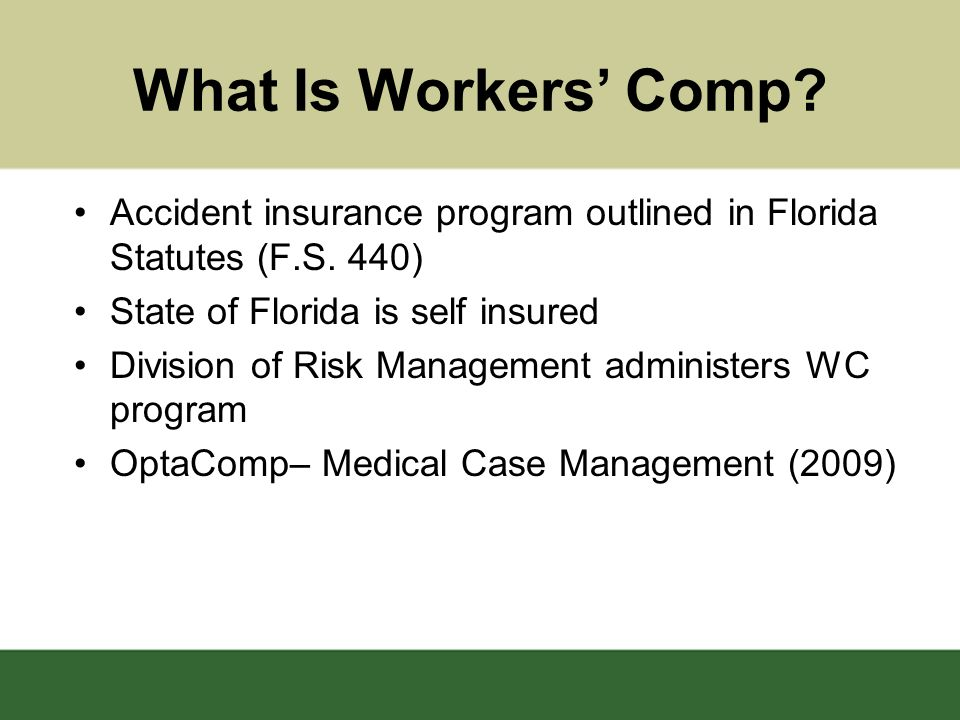 Purpose Provide medical treatment/benefits to employees for work related injuries to facilitate return to gainful employment Provide, if appropriate –Medical treatment/prescriptions –Supplement wages –Requirement of Light duty –Reasonable travel costs for medical treatment –Possible rehabilitation services (not required) USF provides 40 hrs.