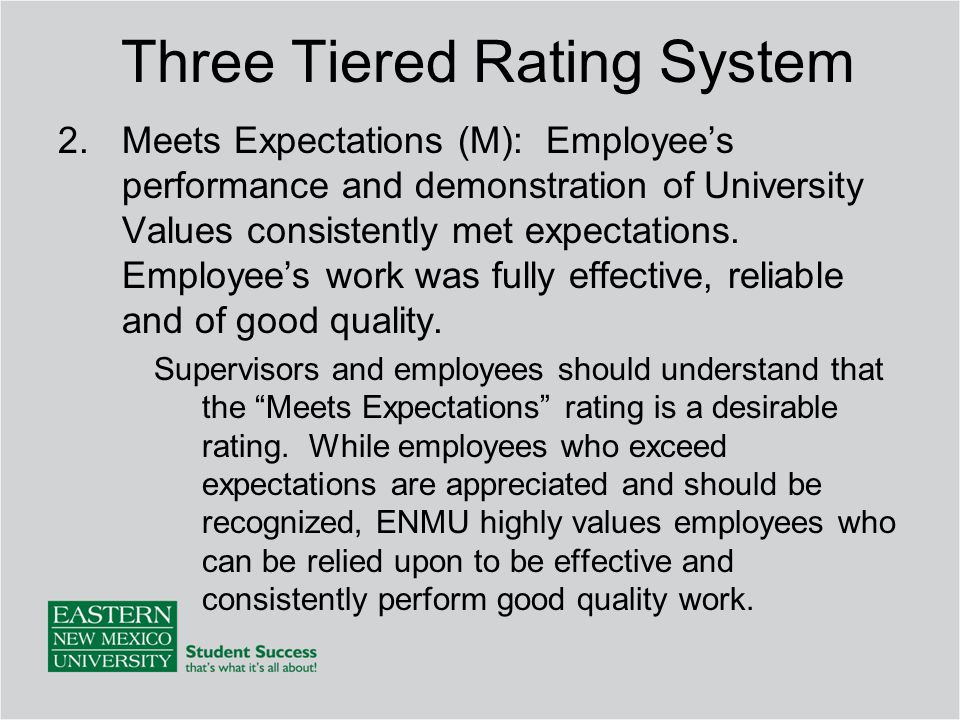 2.Meets Expectations (M): Employee's performance and demonstration of University Values consistently met expectations.