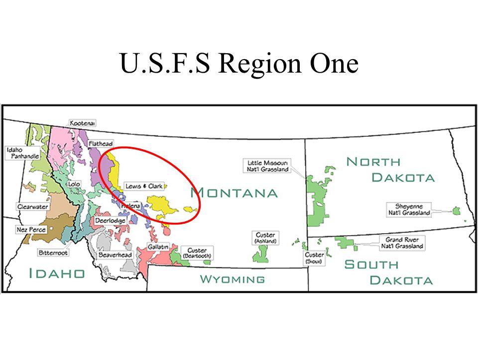 U.S.F.S Region One