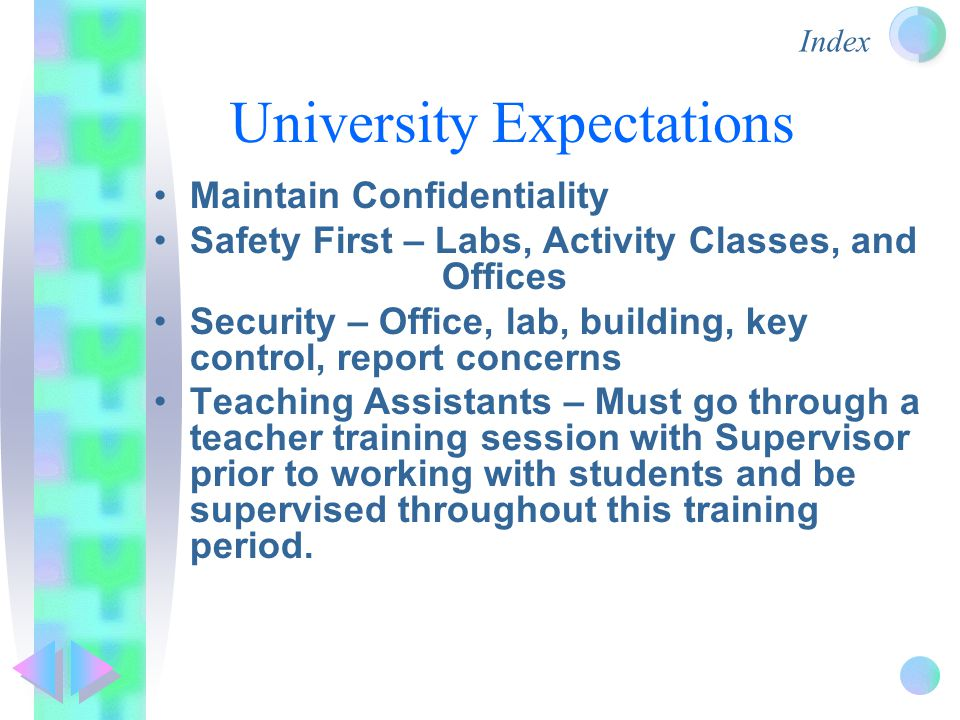 Index University Expectations Maintain Confidentiality Safety First – Labs, Activity Classes, and Offices Security – Office, lab, building, key control, report concerns Teaching Assistants – Must go through a teacher training session with Supervisor prior to working with students and be supervised throughout this training period.