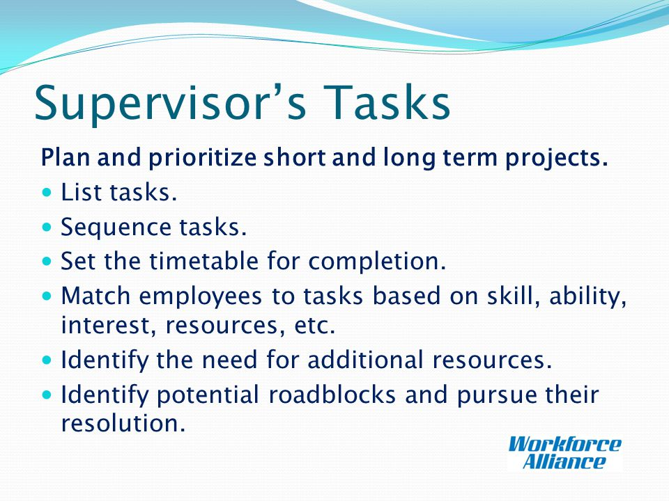 Supervisor's Tasks Plan and prioritize short and long term projects.