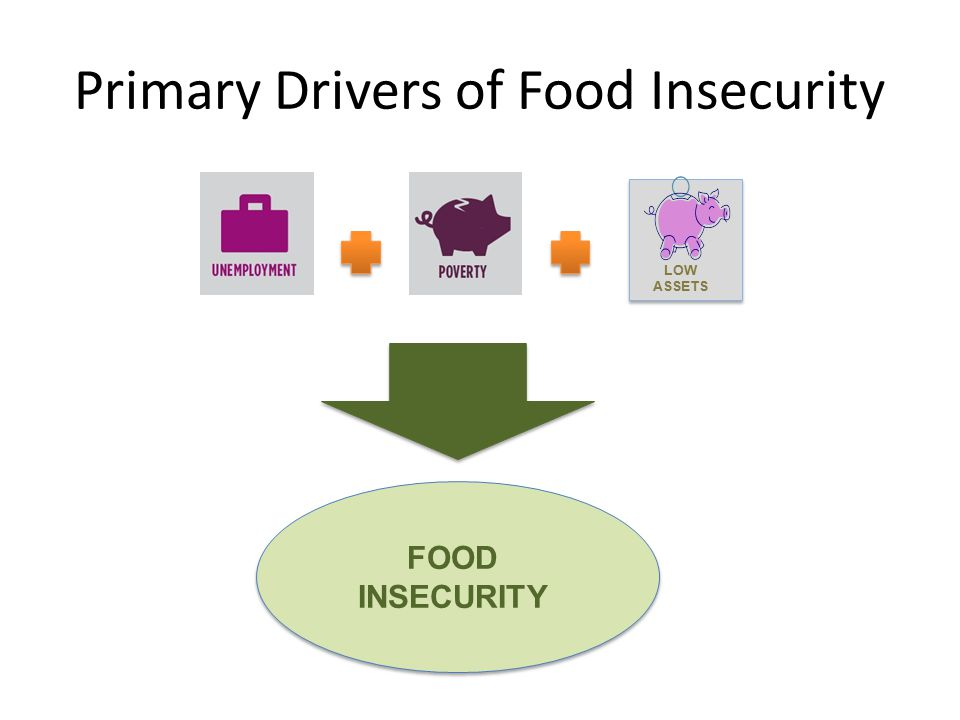 Primary Drivers of Food Insecurity FOOD INSECURITY LOW ASSETS