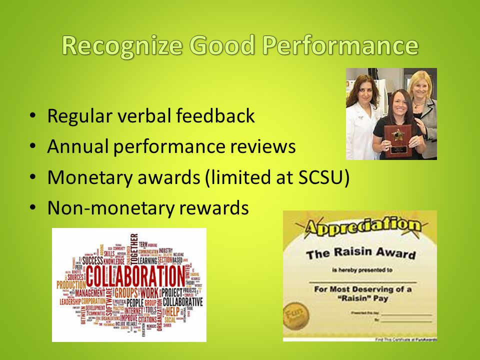 Regular verbal feedback Annual performance reviews Monetary awards (limited at SCSU) Non-monetary rewards