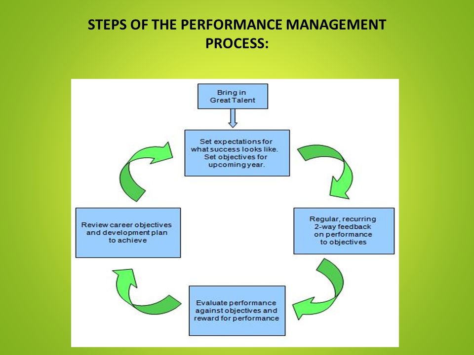 STEPS OF THE PERFORMANCE MANAGEMENT PROCESS: