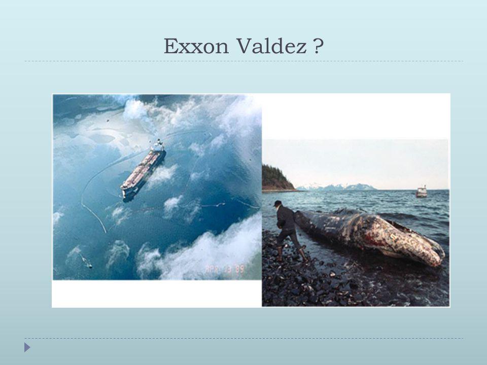 Exxon Valdez ?