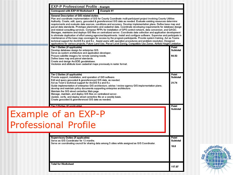 Example of an EXP-P Professional Profile