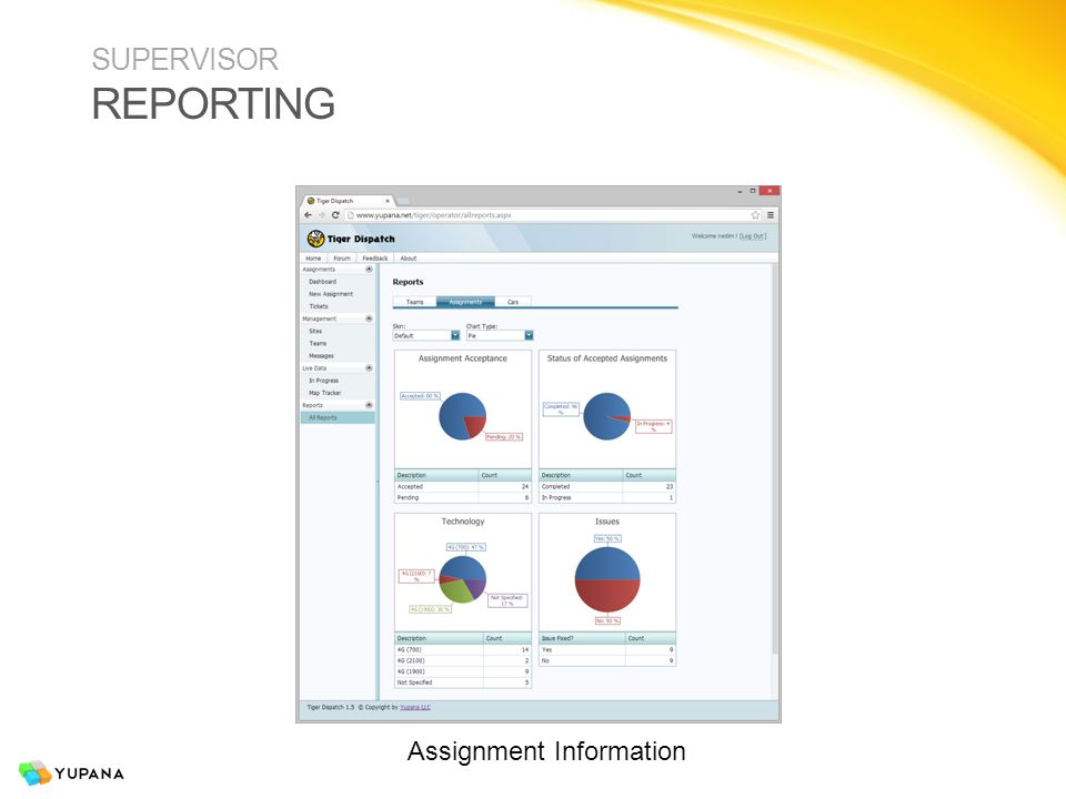SUPERVISOR REPORTING Assignment Information