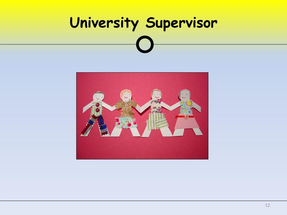 University Supervisor 12