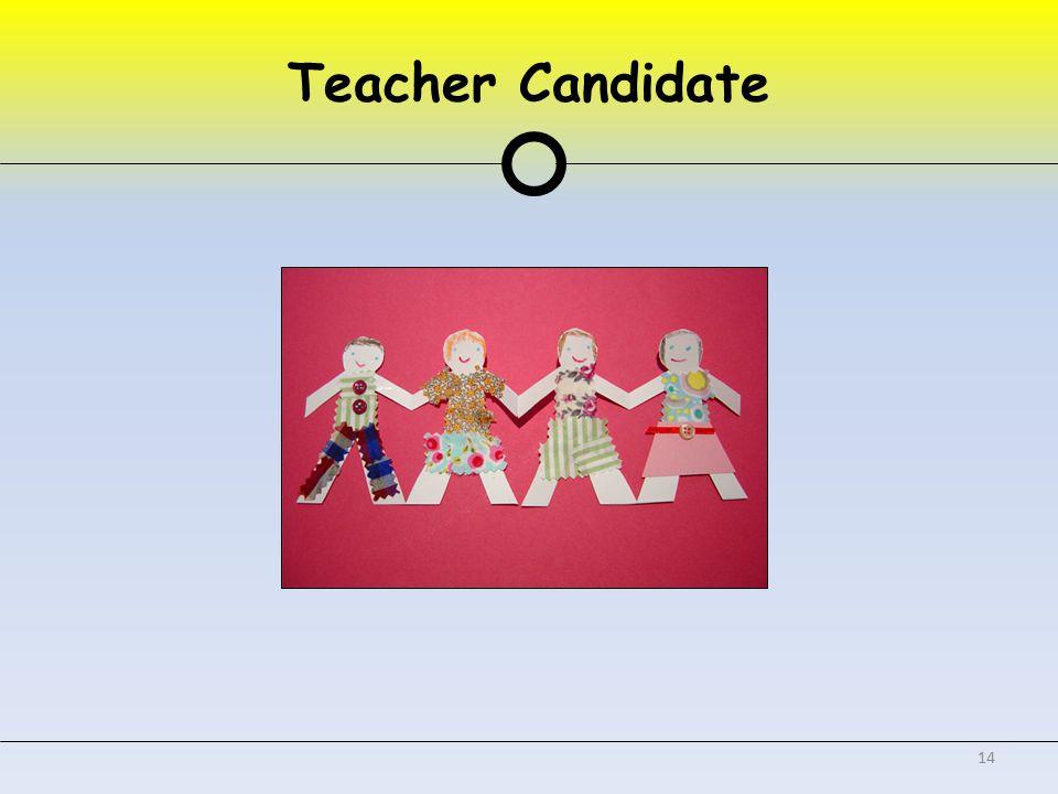 Teacher Candidate 14