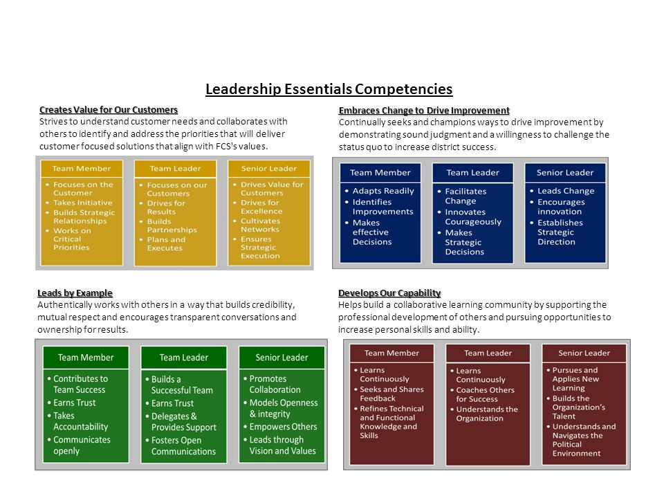 Leadership Essentials Competencies Embraces Change to Drive Improvement Continually seeks and champions ways to drive improvement by demonstrating sound judgment and a willingness to challenge the status quo to increase district success.