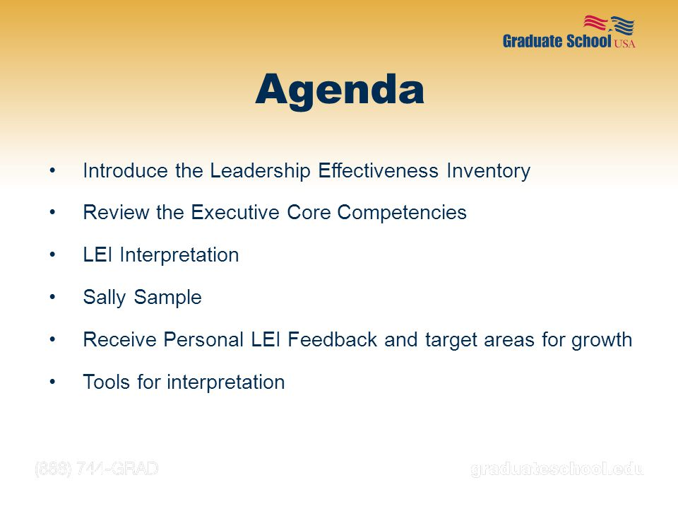 Introduce the Leadership Effectiveness Inventory Review the Executive Core Competencies LEI Interpretation Sally Sample Receive Personal LEI Feedback