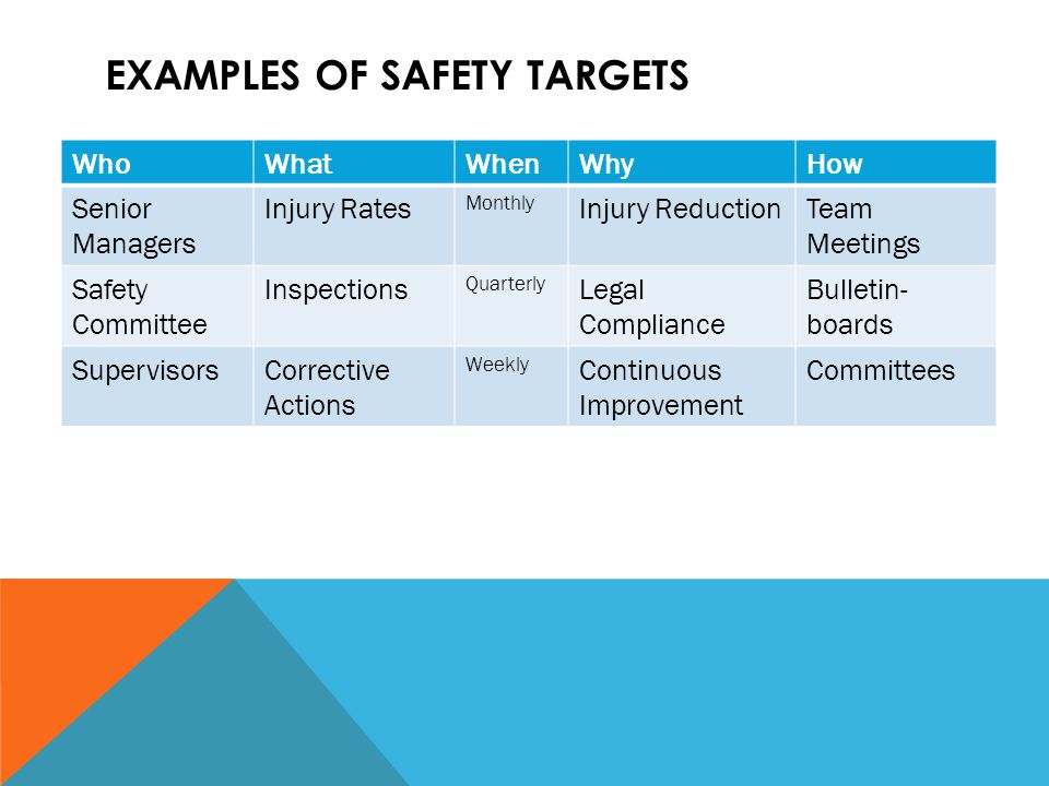 EXAMPLES OF SAFETY TARGETS WhoWhatWhenWhyHow Senior Managers Injury Rates Monthly Injury ReductionTeam Meetings Safety Committee Inspections Quarterly