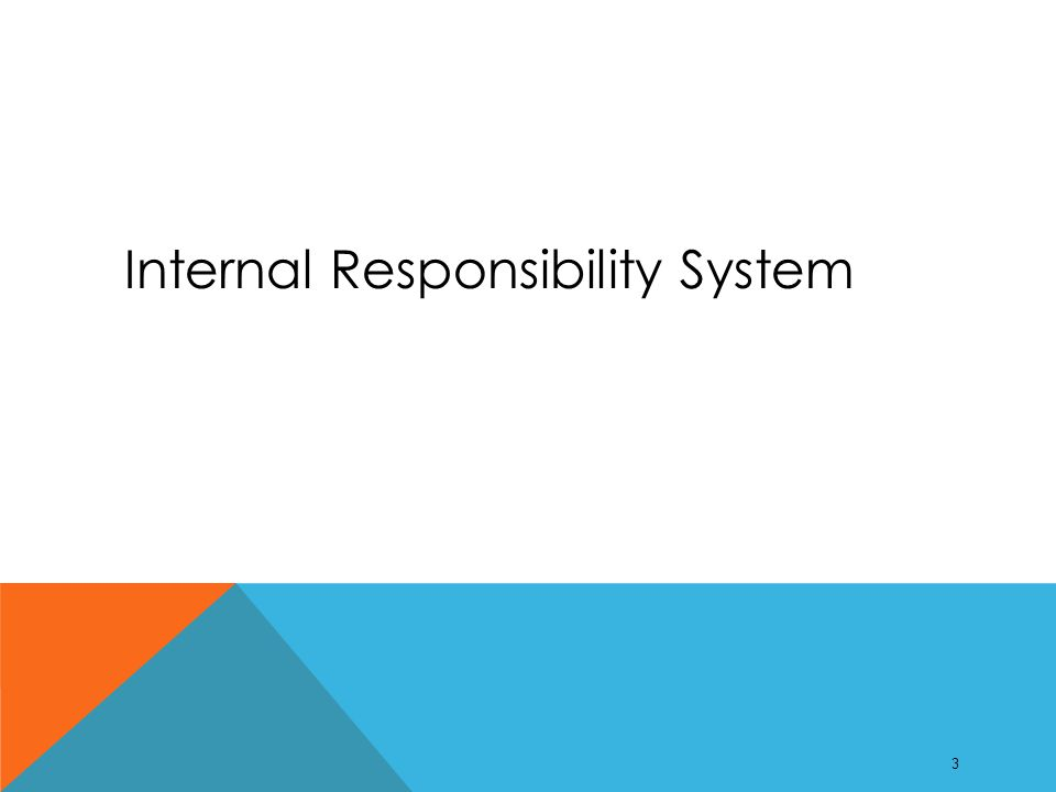 INTERNAL RESPONSIBILITY SYSTEM  Internal responsibility should be active at a workplace with partnerships in place to ensure a safe workplace which includes: responsibility, cooperation, sharing information, accountability and integrating H&S in to daily production activities.