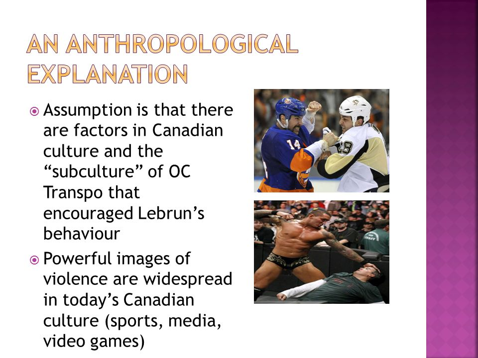  Assumption is that there are factors in Canadian culture and the subculture of OC Transpo that encouraged Lebrun's behaviour  Powerful images of violence are widespread in today's Canadian culture (sports, media, video games)
