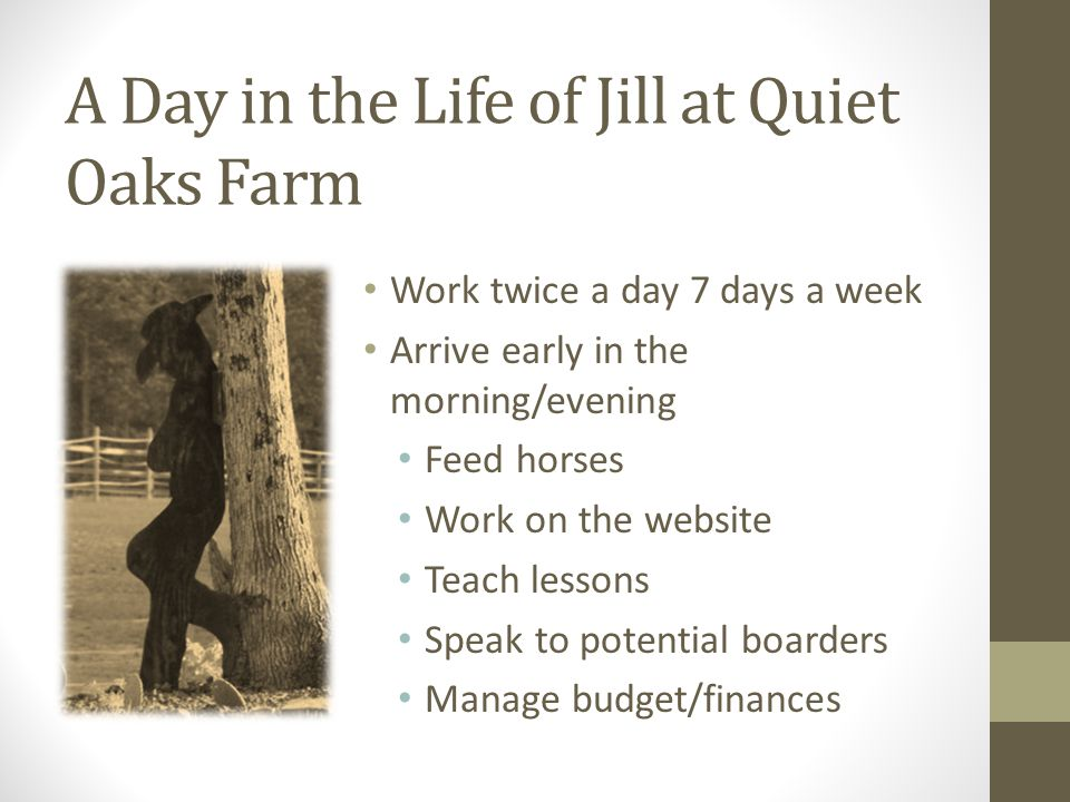 A Day in the Life of Jill at Quiet Oaks Farm Work twice a day 7 days a week Arrive early in the morning/evening Feed horses Work on the website Teach lessons Speak to potential boarders Manage budget/finances