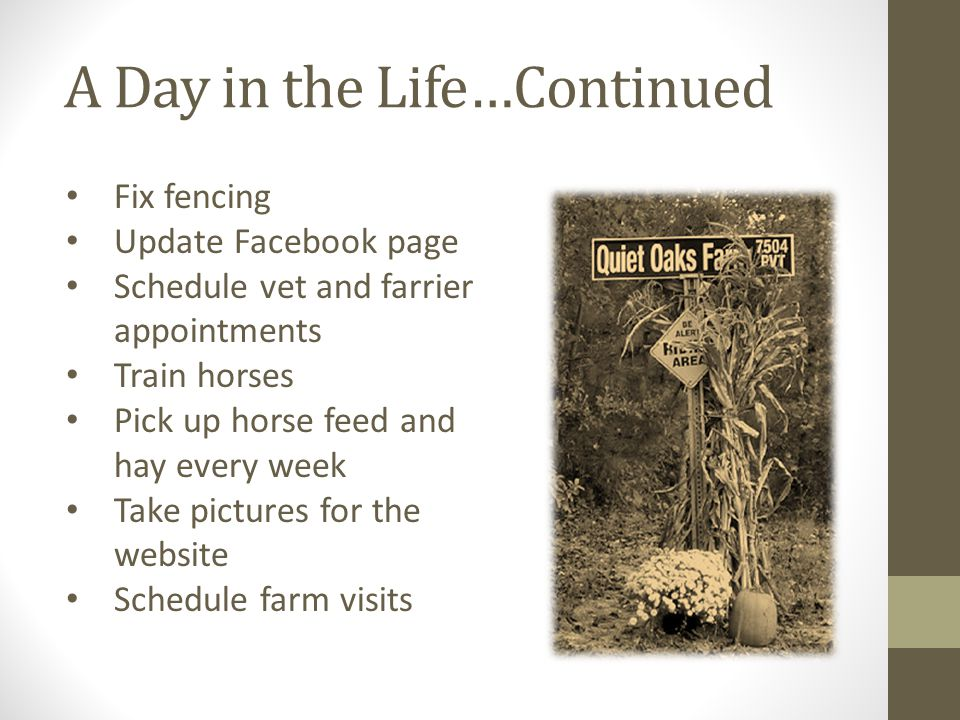 A Day in the Life…Continued Fix fencing Update Facebook page Schedule vet and farrier appointments Train horses Pick up horse feed and hay every week Take pictures for the website Schedule farm visits