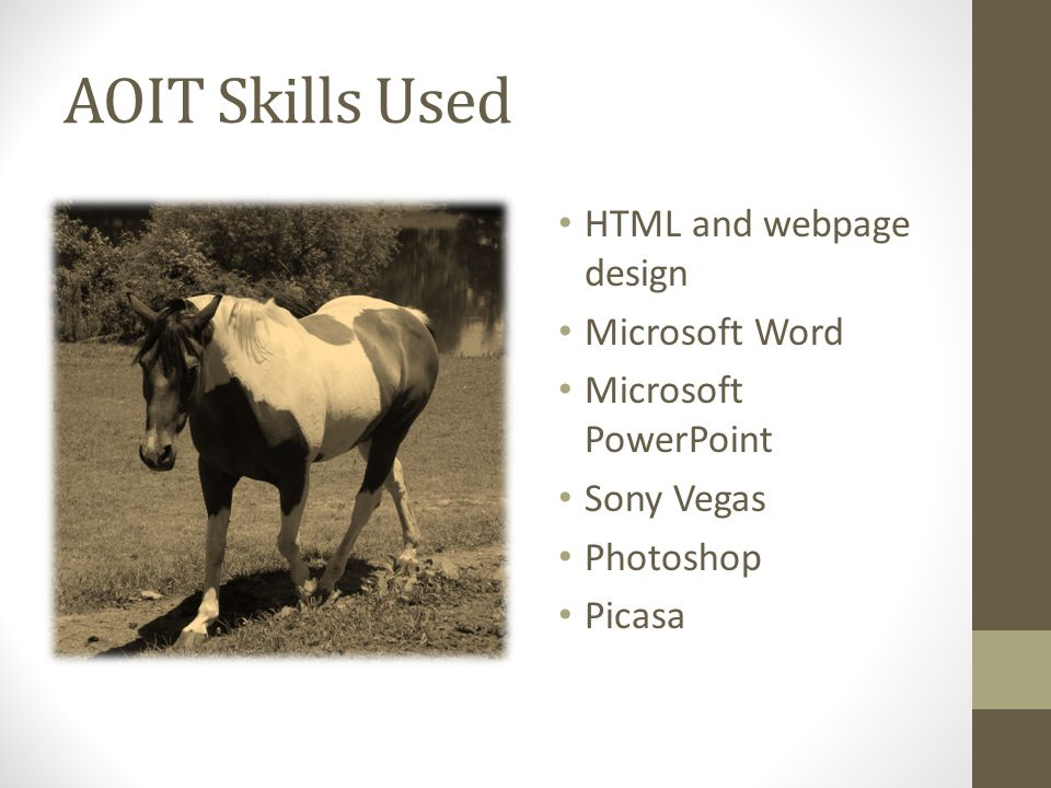 AOIT Skills Used HTML and webpage design Microsoft Word Microsoft PowerPoint Sony Vegas Photoshop Picasa
