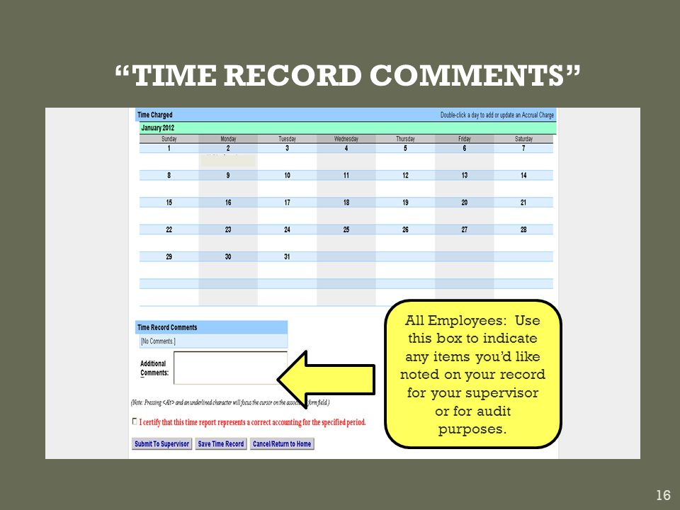 TIME RECORD COMMENTS 16 All Employees: Use this box to indicate any items you'd like noted on your record for your supervisor or for audit purposes.