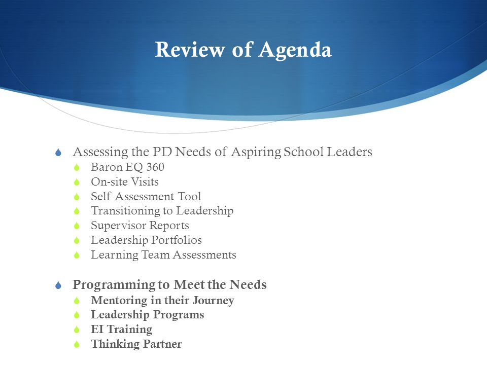 Review of Agenda  Assessing the PD Needs of Aspiring School Leaders  Baron EQ 360  On-site Visits  Self Assessment Tool  Transitioning to Leadership  Supervisor Reports  Leadership Portfolios  Learning Team Assessments  Programming to Meet the Needs  Mentoring in their Journey  Leadership Programs  EI Training  Thinking Partner