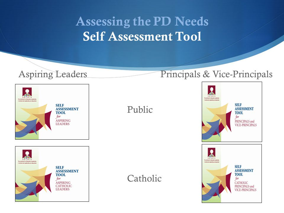 Assessing the PD Needs Self Assessment Tool Catholic Public Aspiring LeadersPrincipals & Vice-Principals