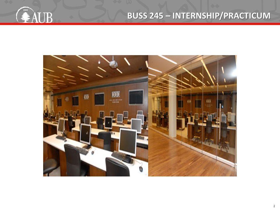 BUSS 245 – INTERNSHIP/PRACTICUM 2