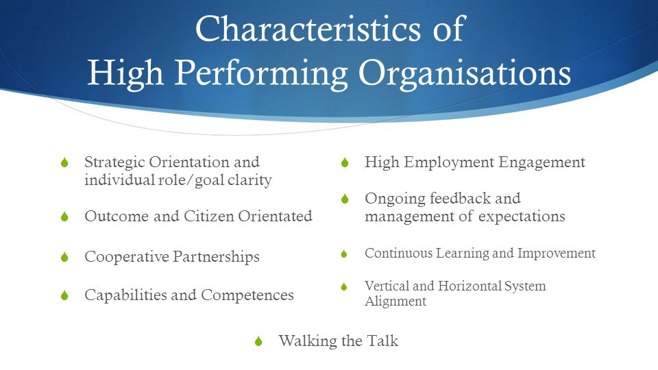 Characteristics of High Performing Organisations  Continuous Learning and Improvement  Vertical and Horizontal System Alignment  Strategic Orientation and individual role/goal clarity  Outcome and Citizen Orientated  Cooperative Partnerships  Capabilities and Competences  High Employment Engagement  Ongoing feedback and management of expectations  Walking the Talk