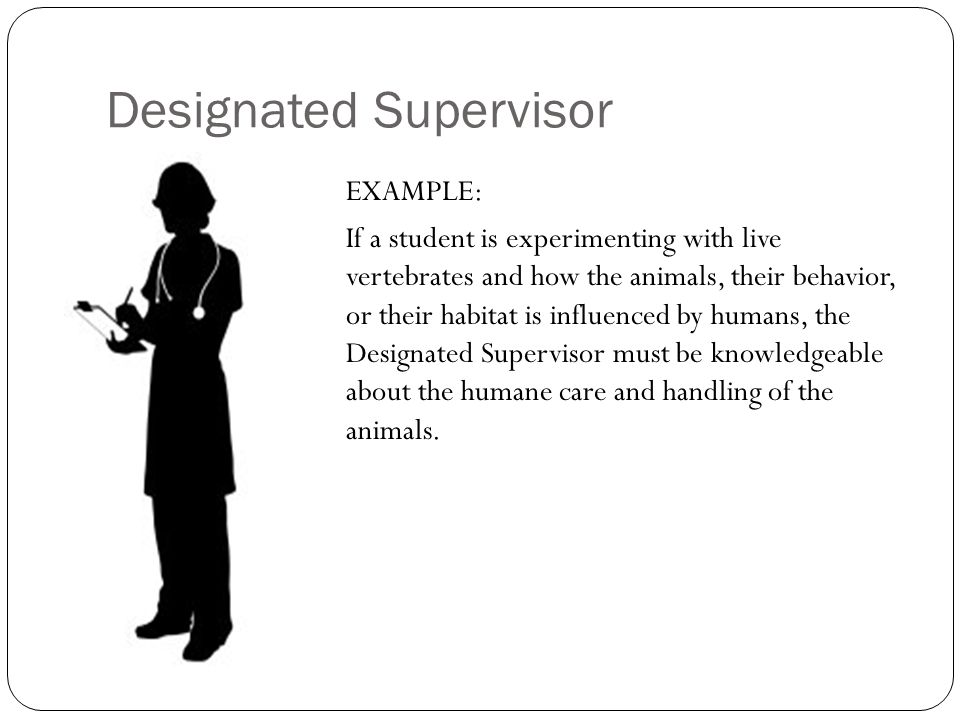 Designated Supervisor EXAMPLE: If a student is experimenting with live vertebrates and how the animals, their behavior, or their habitat is influenced by humans, the Designated Supervisor must be knowledgeable about the humane care and handling of the animals.