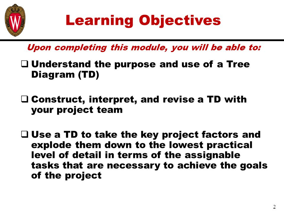 Learning Objectives Upon completing this module, you will be able to:  Understand the purpose and use of a Tree Diagram (TD)  Construct, interpret, and revise a TD with your project team  Use a TD to take the key project factors and explode them down to the lowest practical level of detail in terms of the assignable tasks that are necessary to achieve the goals of the project 2