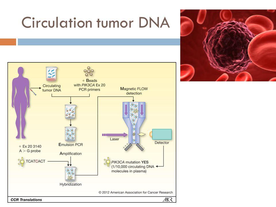 Circulation tumor DNA
