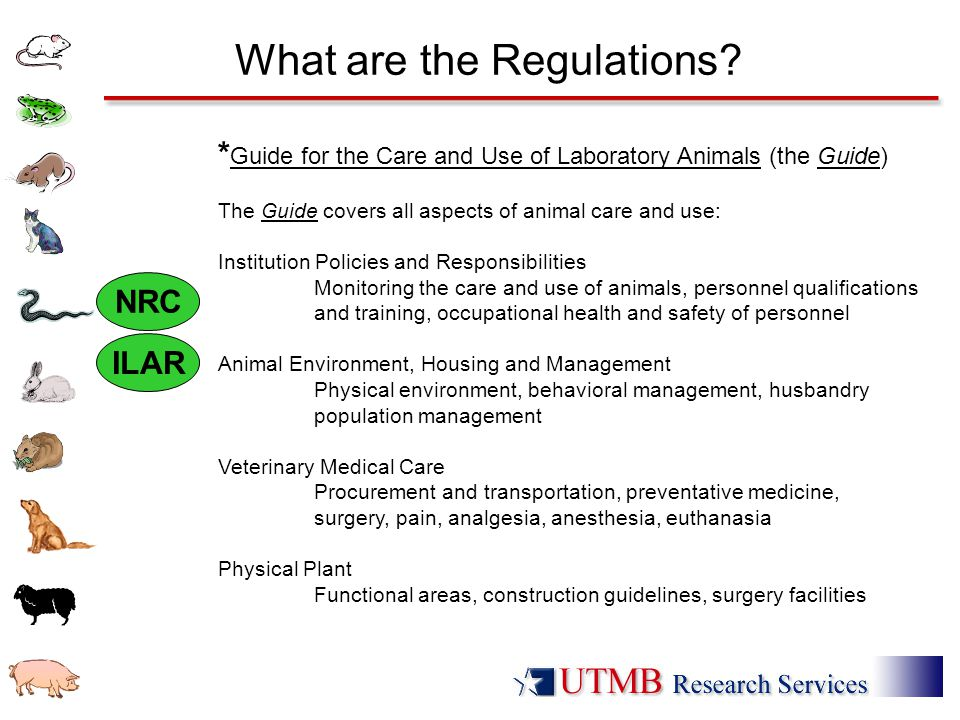 What are the Regulations? * Guide for the Care and Use of Laboratory Animals (the Guide) The Guide covers all aspects of animal care and use: Institut