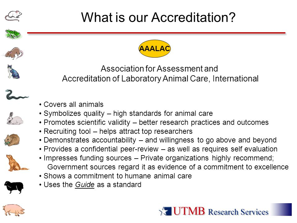 What is our Accreditation.