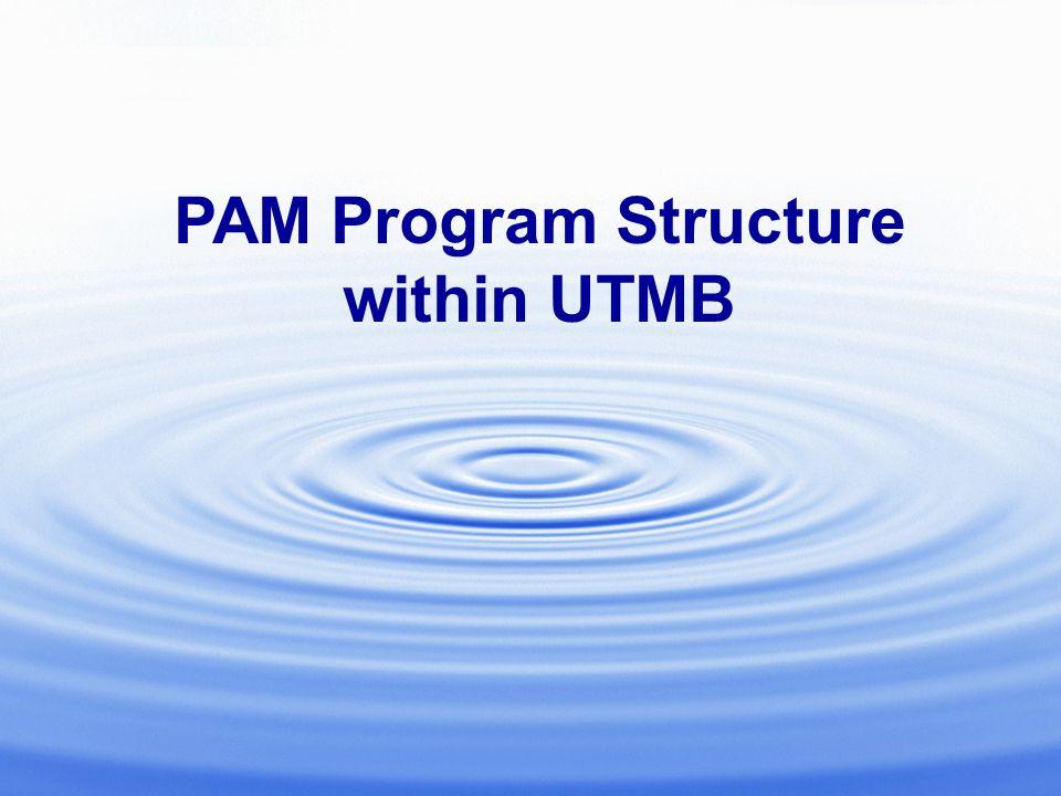 PAM Program Structure within UTMB