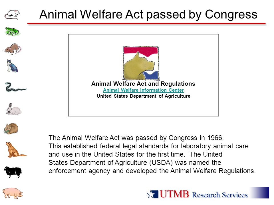 Animal Welfare Act passed by Congress The Animal Welfare Act was passed by Congress in 1966. This established federal legal standards for laboratory a